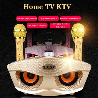SDRD SD-306 Portable Family Karaoke System Condenser Wireless Stereo Bluetooth Speaker Set with Dual Wireless Microphones
